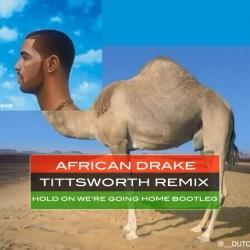 Drake-Camel
